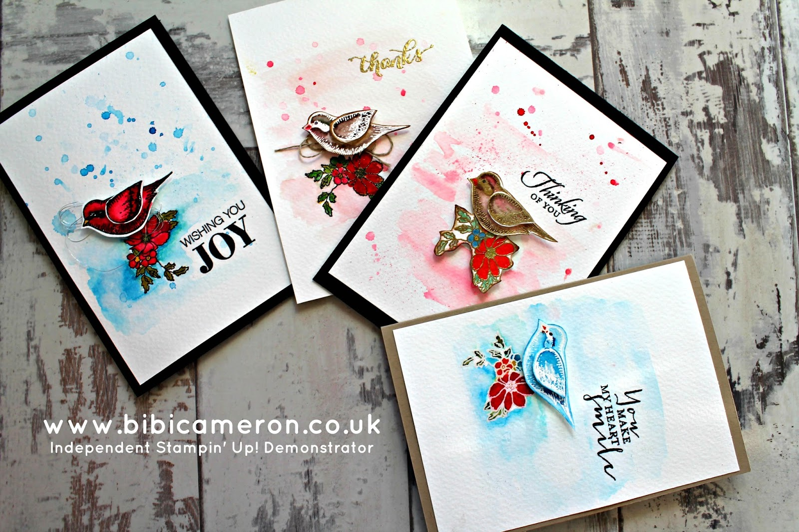 Stampin Up stamps and inks to make cards  for any ocassion