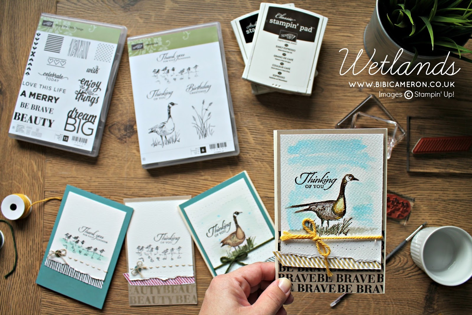 EASY NATURE THEMED CARDS WITH WETLANDS STAMPIN UP FOR GLOBAL DESIGN PROJECT #GDP031