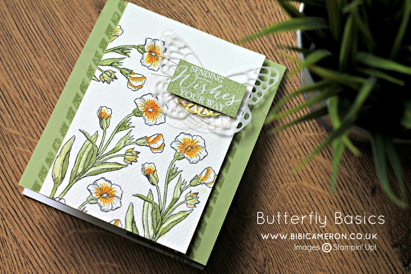 BUTTERFLY BASICS FOR GLOBAL DESING PROJECT GDP040 – Case the Designer