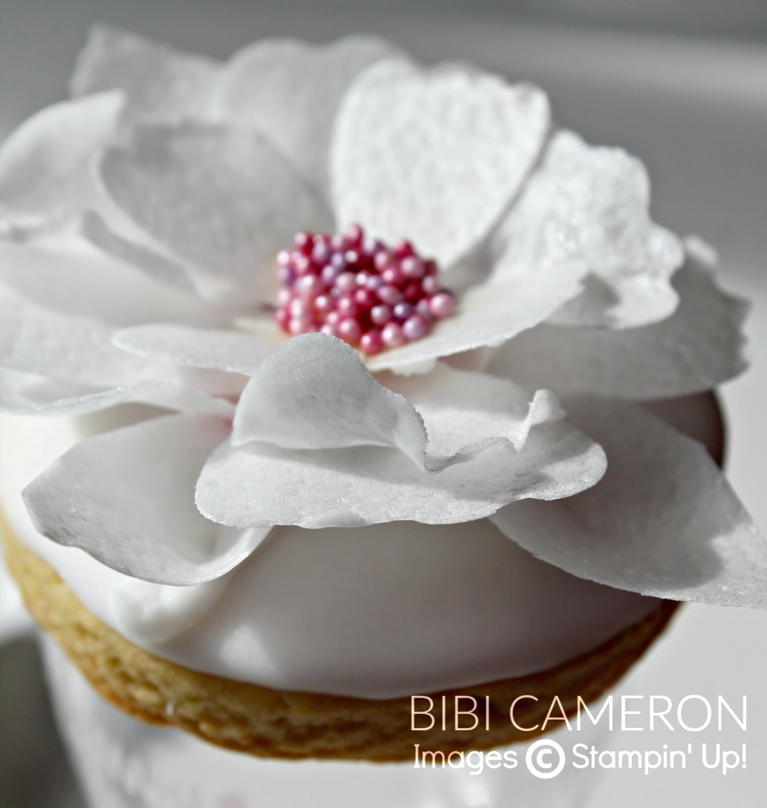 Blossom Builder Punch Wafer Paper Flowers   Video  GDP#051