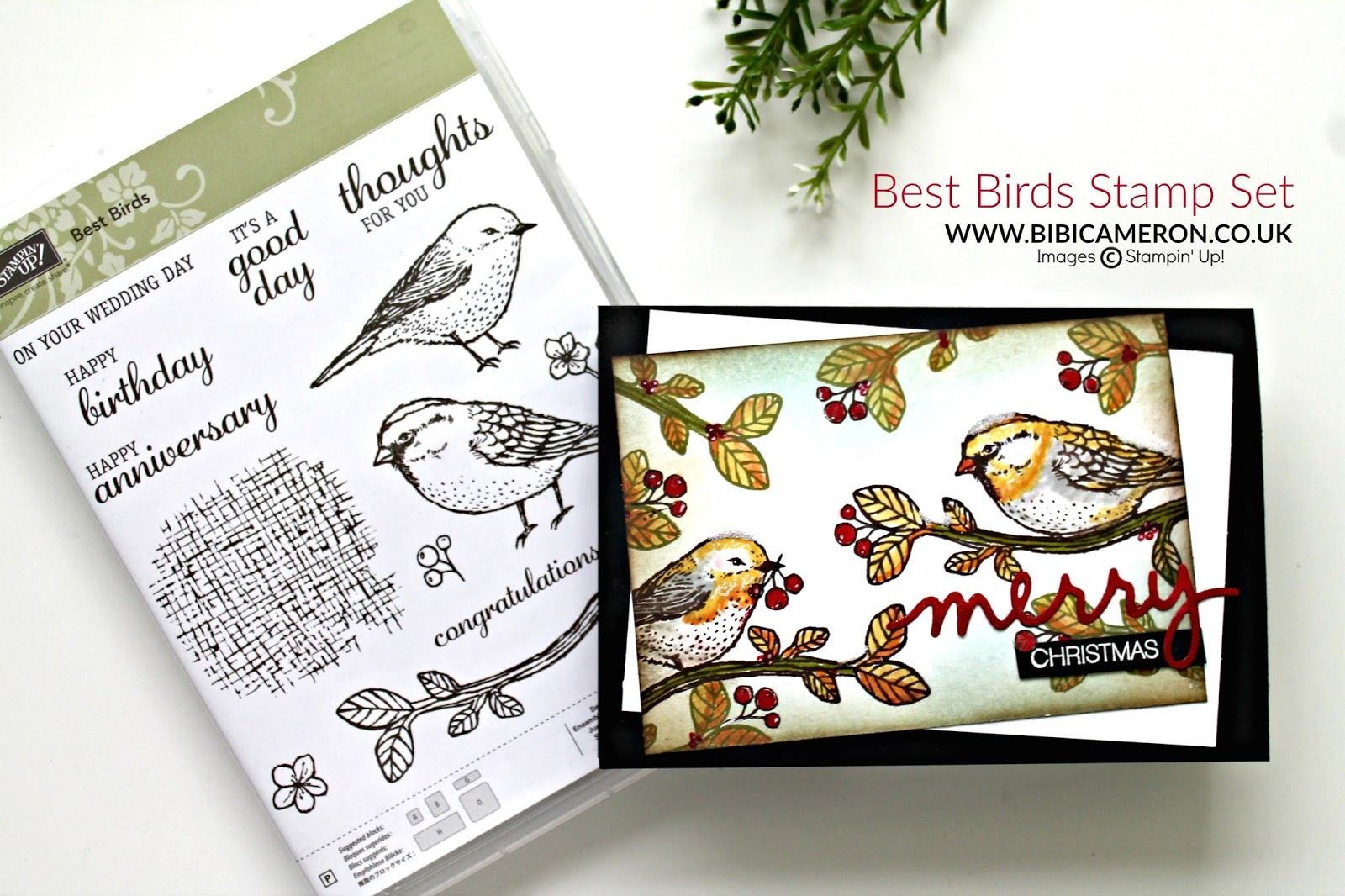 4 Projects with  Best Birds and Sunshine Sayings Stampin Up | GDP062