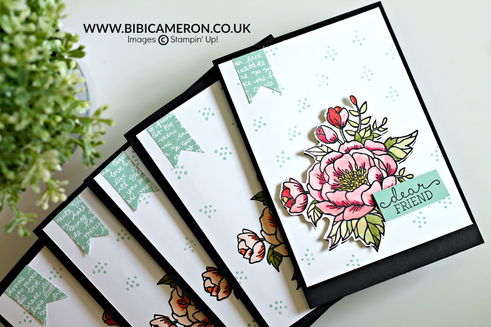 Stampin' Up!  Birthday Blooms for GDP064 – CASE the Designer Connie Collins