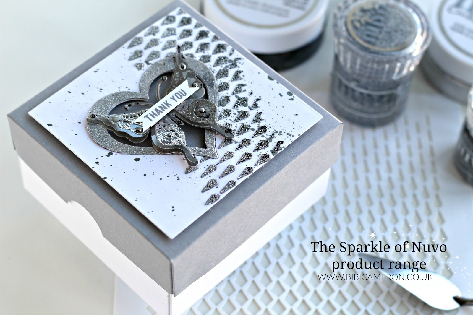The Sparkle of Nuvo Product Range | Silver Paper Box