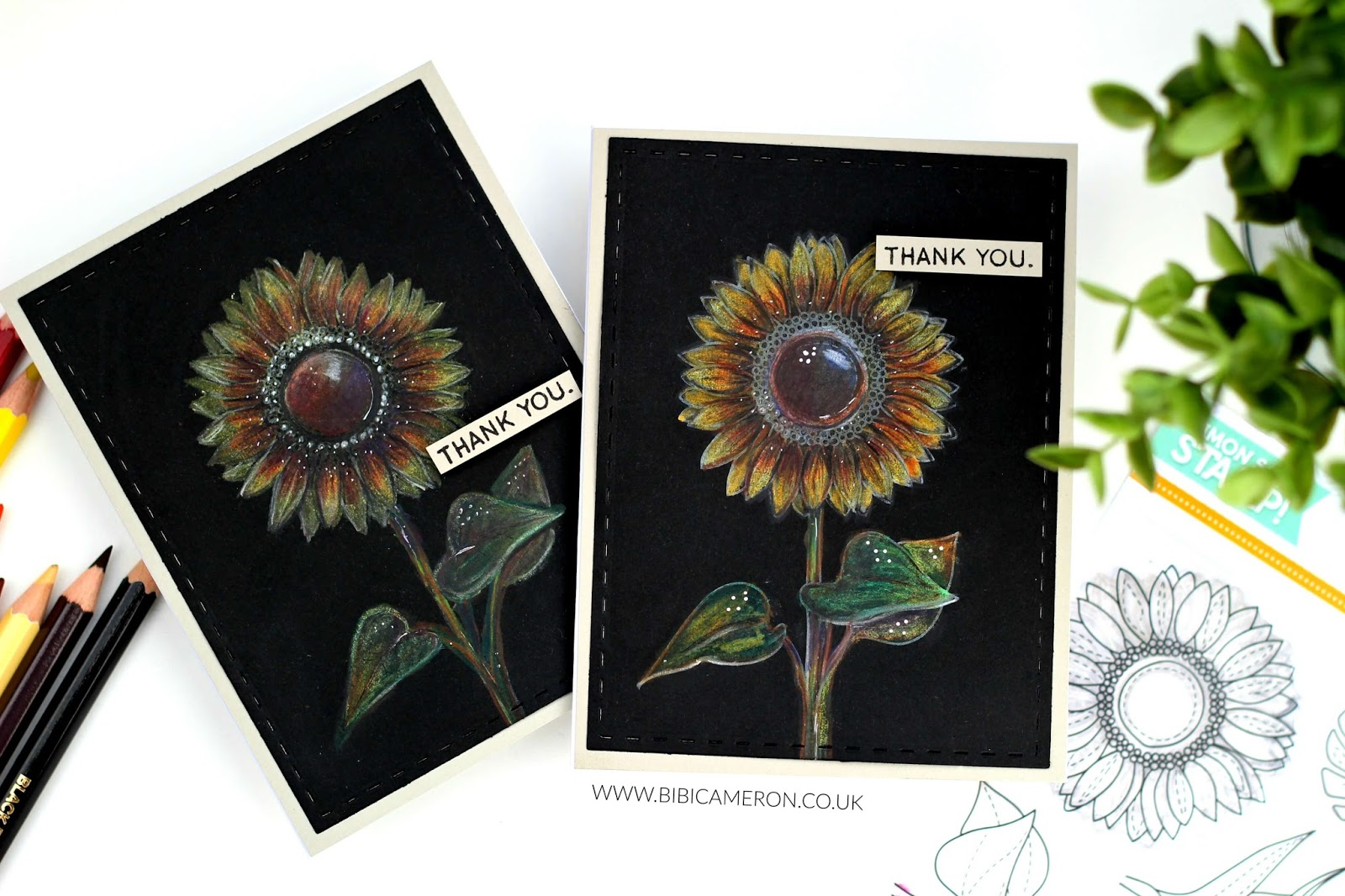 Colored Pencils on Black Cardstock | Video Post with Summer Flowers by Simon Says Stamps