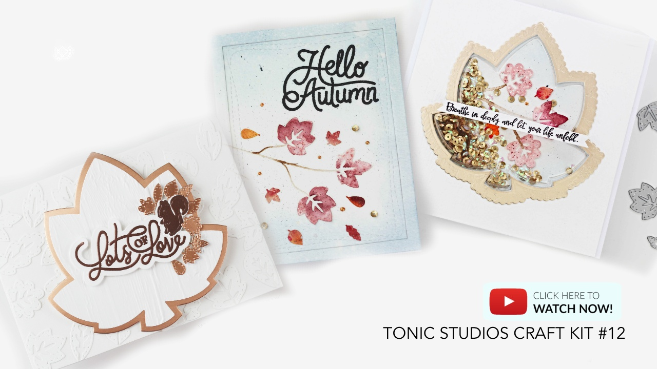 3 easy ideas Video Post with Tonic Craft Kit #12