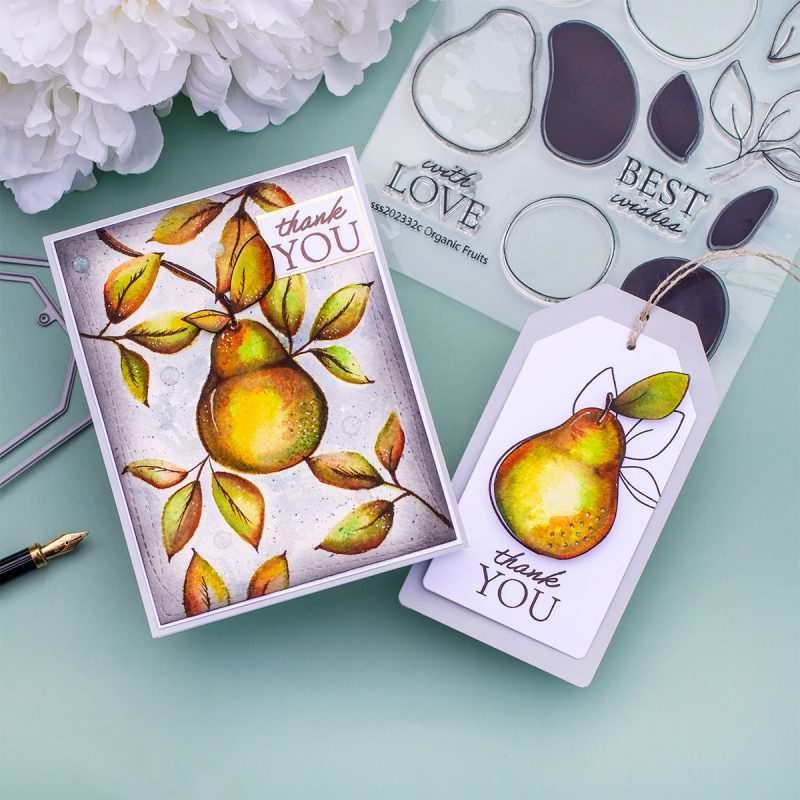 Zigs  No-Line  Watercolor Pears + Organic Fruits by Simon Says Stamp
